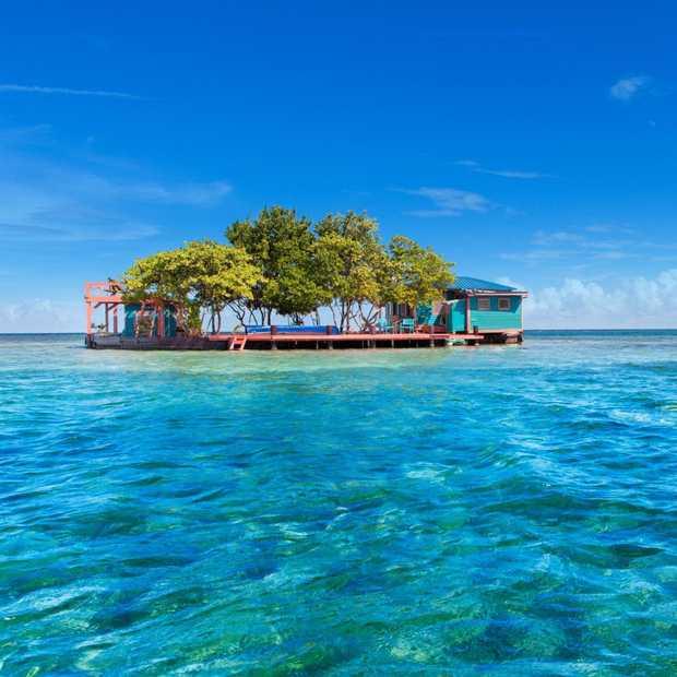 Bird Island: een droomeilandje helemaal voor jou alleen!