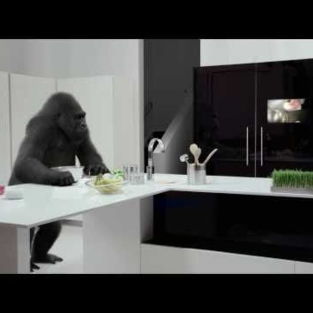 Corning® Gorilla® Glass: Cooking Up Tomorrow's Kitchen