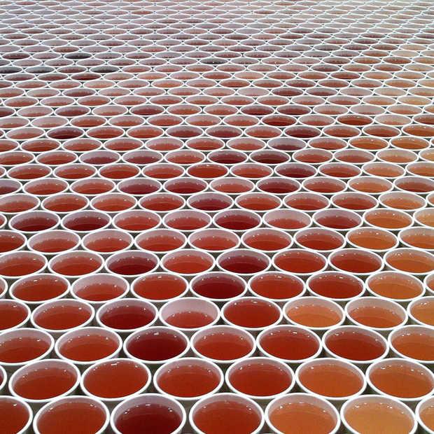 Deze man zet 66.000 bekers gekleurd water neer en dit is het resultaat