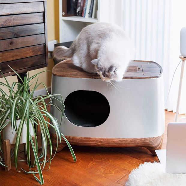iKuddle: de kattenbak verschonen is verleden tijd