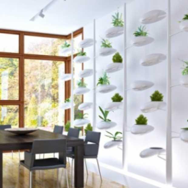 Mini-tuin in je huis